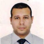 Prof. Mohammad Ali Abdelkareem