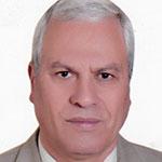 Abdelaal Abouelela Abdelaal
