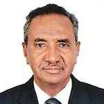 Seifeddin G. Ballal