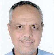 Ayman A. Aly El-Naggar